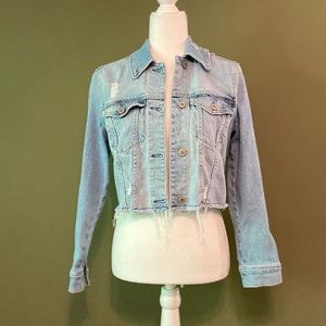 Hollister California cropped Jean jacket XS